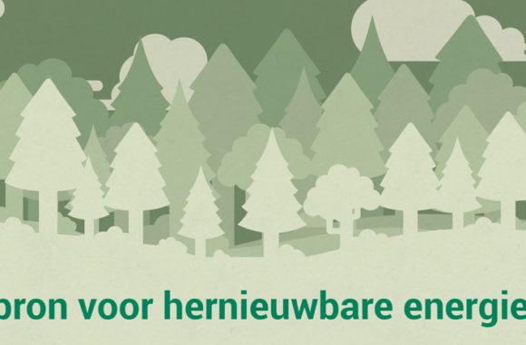 Biomassa / hout voor duurzame energie