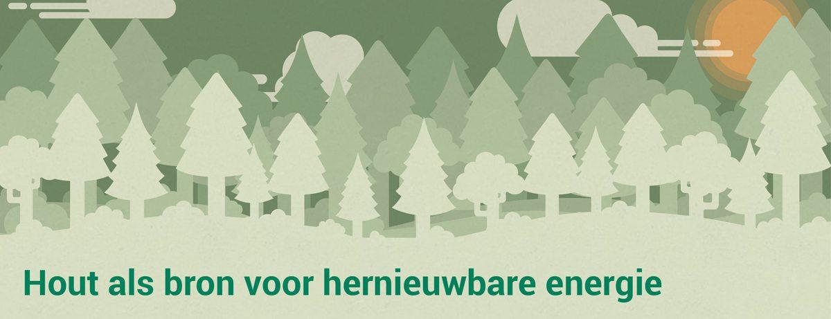Waarom is biomassa / hout als hernieuwbare energie goed alternatief voor fossiel?